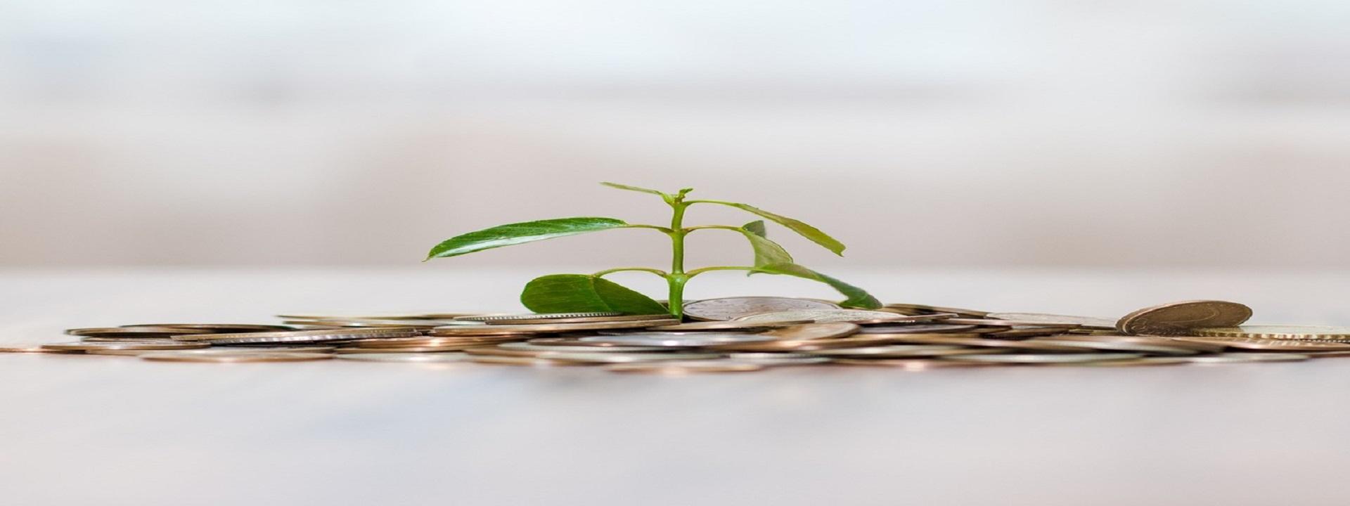4 tipy jak refinancovat úvěr, pokud máte nízký a nestabilní příjem